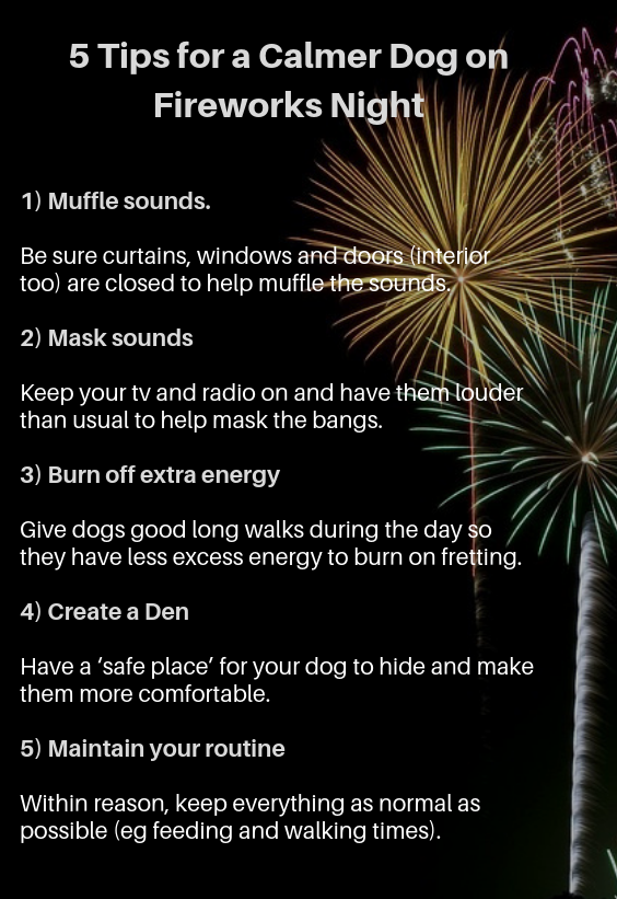 5 Tips for a Calmer Dog on Fireworks Night 1) Muffle sounds. Be sure curtains, windows and doors (interior too) are closed to help muffle the sounds. 2) Mask sounds Keep your tv and radio on and have them louder than usual to help mask the bangs. 3) Burn off extra energy Give dogs good long walks during the day so they have less excess energy to burn on fretting. 4) Create a Den Have a 'safe place' for your dog to hide and make them more comfortable. 5) Maintain your routine Within reason, keep everything as normal as possible (eg feeding and walking times).