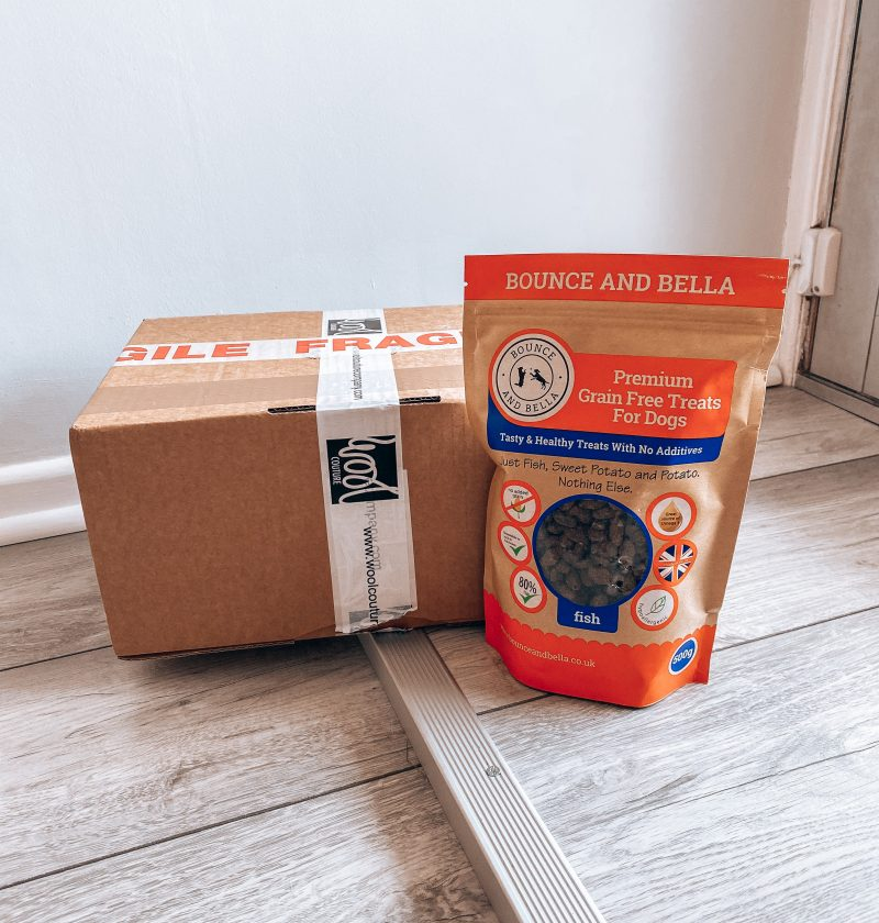 Box of Treats Game featuring an empty cardboard box and a packet of treats.