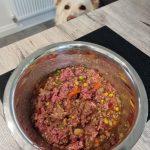 Raw Feeding for Senior Dogs