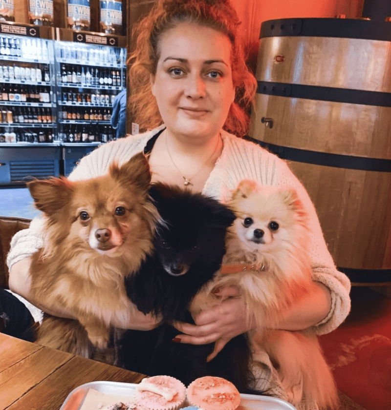 Live with the CityDogExpert, Kimberly and her Pomeranians